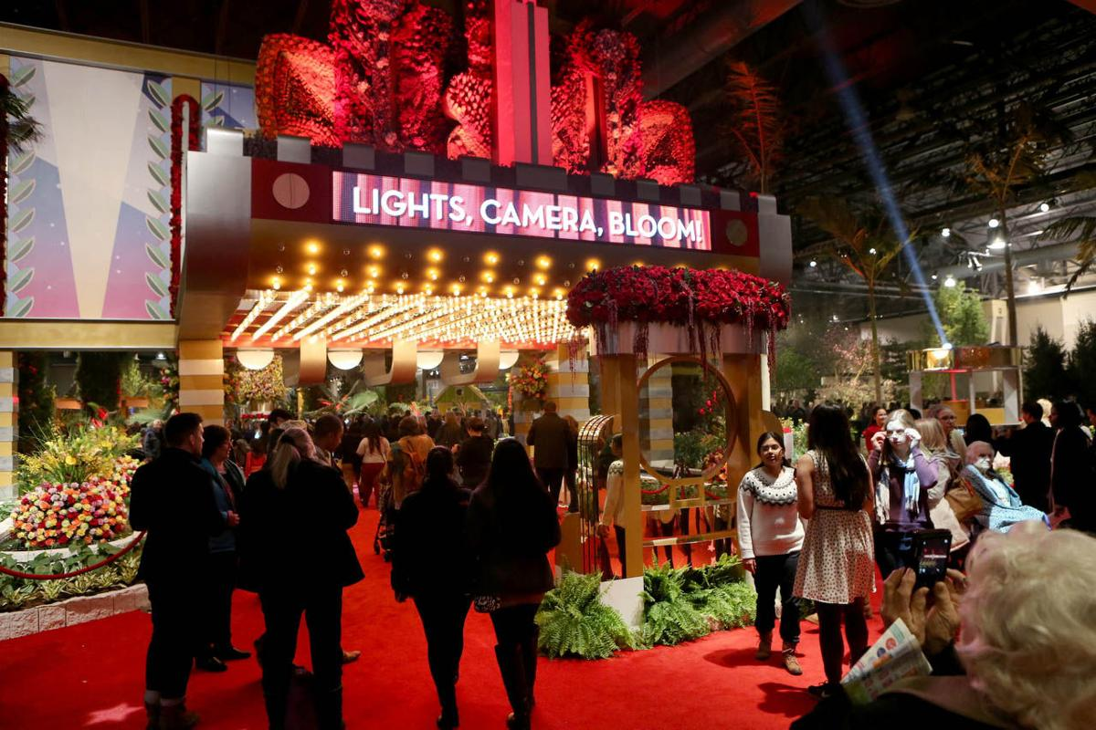 Philadelphia Flower Show Celebrate the Movies News Galleries