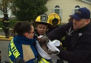 hamilton township dog saved