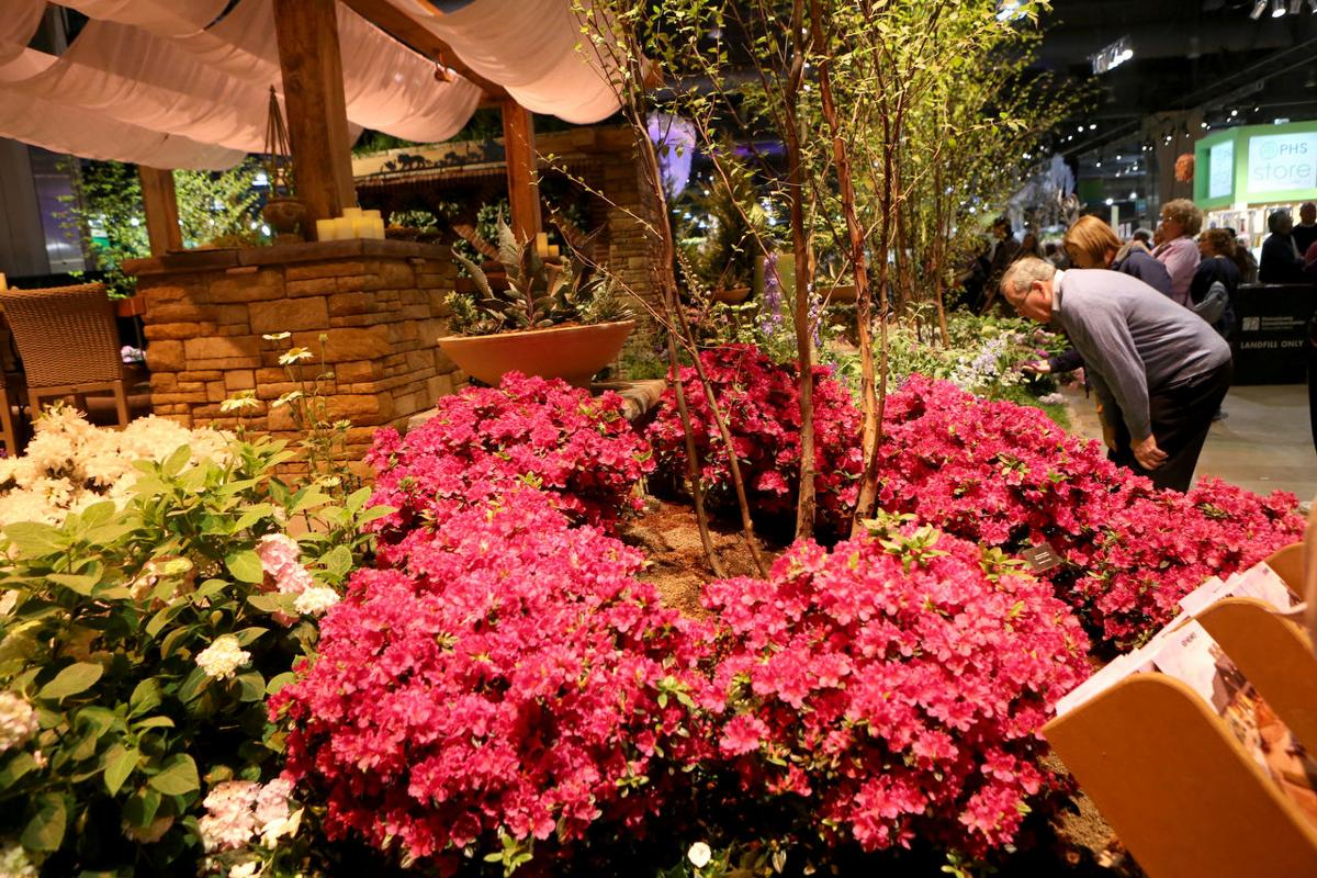 Waldor Orchids show off at Philadelphia s Flower Show Living