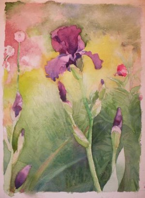 Water color artist shows off his work in Cape May