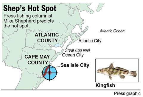 Shep Hot Spot kingfish Sea Isle City