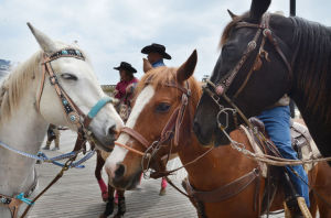 Horses parade in Atlantic City to promote rodeo in October