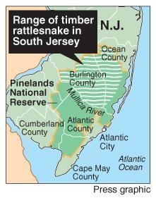 Pinelands rattlesnake map