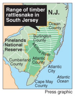 Pinelands rattlesnake map