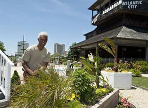 Green Thumbs: Love of gardening, desire to give back to community are key qualities of Master Gardener