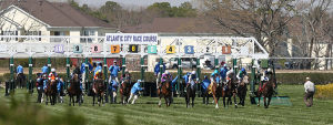 Day At The Races: First race of the day starts out of the chute. Sunday April 27 2014 Live turf racing at the Atlantic City Racecourse in Mays Landing. (The Press of Atlantic City / Ben Fogletto) - Ben Fogletto