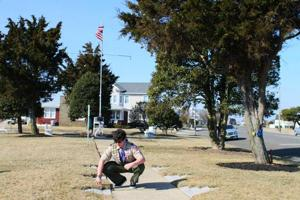 Scout's lofty park plan earns early Eagle rank