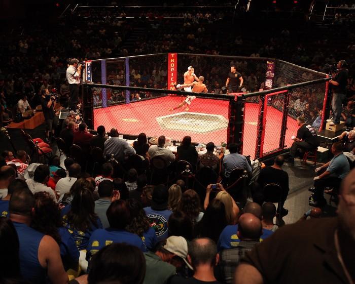 MMA in AC109113106.jpg