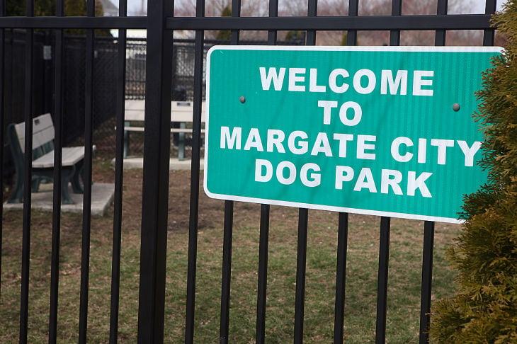 dbml m26 dog park 08122416546.jpg