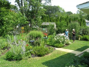 Garden tours go on despite summer's stormy start