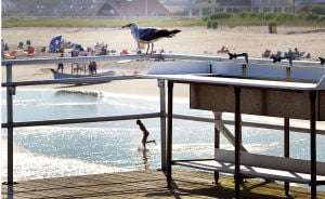 Open Space: A gull sits on the railing by the sinks at the fishing pier. Monday July 29 2013 Ventnor Pier related to open space measure that was up for a vote in the senate on Monday. (The Press of Atlantic City / Ben Fogletto) - Ben Fogletto