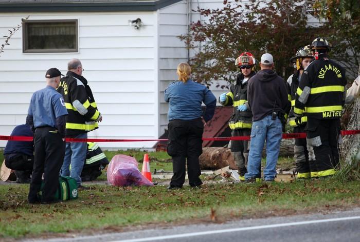 Tree Accident81008317.jpg