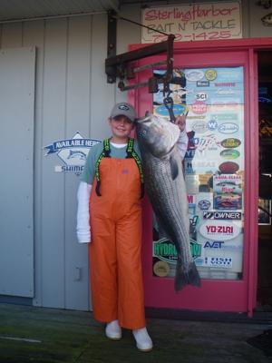 andrioli fish