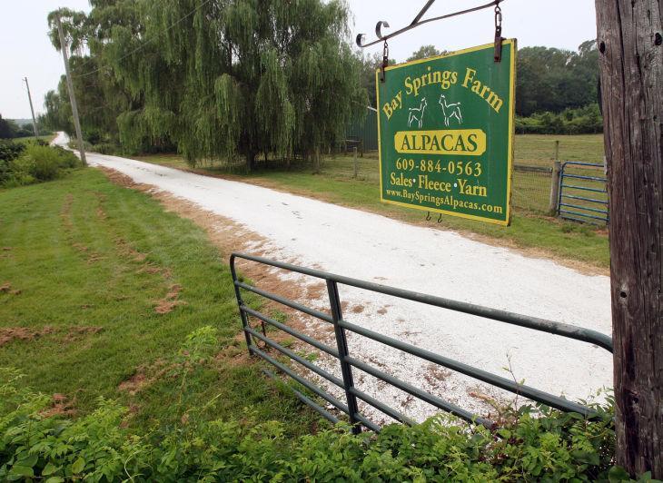 Fake Farms
