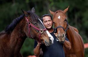 Concrete cowboy creates peace with horse rescue