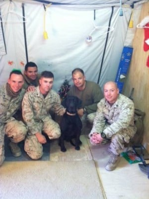 Linwood woman works to support war dogs overseas