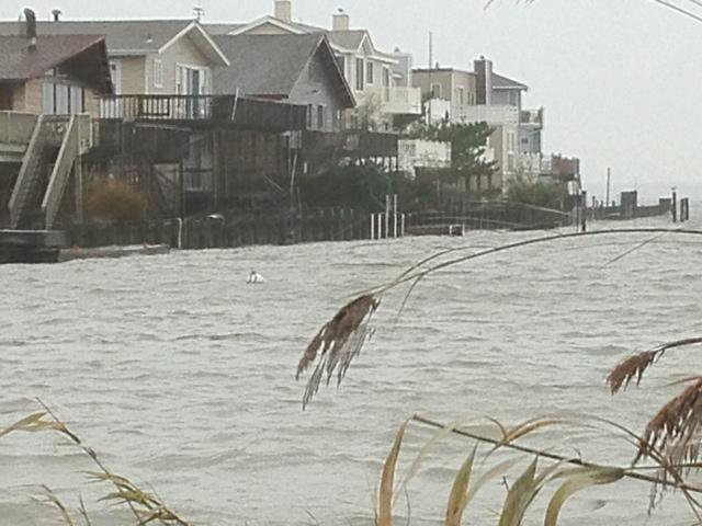 harvey cedars northeaster