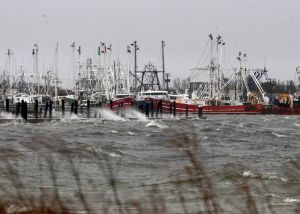 Snow Storm: Heavy surf in Cape May Harbor batters the docks and fishing fleet at Cold Spring Fish and Supply in Lower Township. Photos from Cape May County of the strong winds and minor flooding from the coastal storm. Thursday Feb. 13, 2014. (Dale Gerhard/Press of Atlantic City) - Dale Gerhard