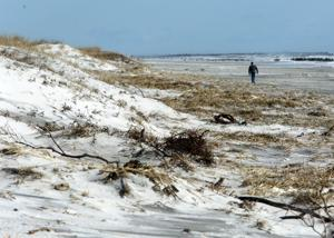Brigantine gives veterans free 4x4 beach access
