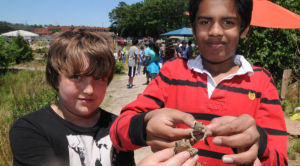 EGAP J12 CAP Nature Fest: Kyle Risley, 13, and Yashib Williams, both of Galloway Township, held toads that they captured and released during Galloway Middle School's Nature Fest in Mr. B's Backyard Classroom. Photo by Dave Griffin