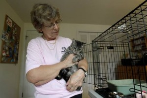 Disabilities no longer death sentence for pets