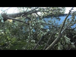 Storm Damage 2.mov