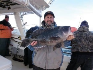 Shep on Fishing: Borrowed rod leads to potential state sea bass record