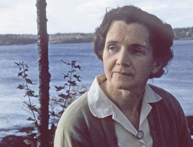rachel carson essay contest maine The response to the silent spring essay contest, offered in partnership with rachel carson national wildlife refuge, was overwhelmingly positivea total of 24 schools and 257 seventh grade.