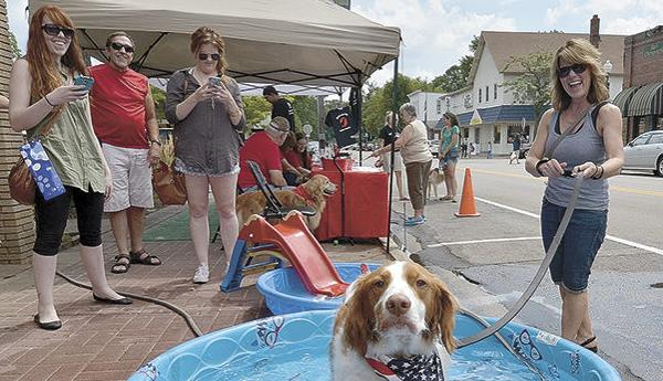 Downtown Dog Day