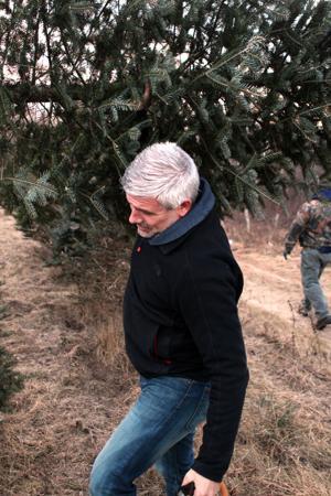 PPR christmas tree farm 1