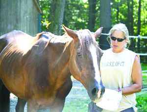 "<p class=""p1""><strong>HORSE president Patty Wahlers with one of two recently rescued horses to be featured at an Adopters Reunion and Volunteer Picnic, Saturday, August 23, at HORSE of Connecticut on Wilbur Road in Washington.</strong></p>"