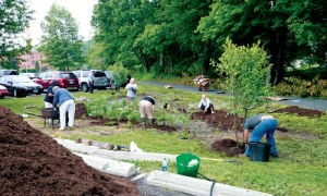 <p>The Siemon Company installed a new rain garden system on the company's property in late June, in an area near the rear parking lot and Steele Brook Greenway, with the help of Soil Scientist, Wetland Ecologist, and Landscape and Permaculture Designer Cynthia Rabinowitz, local Watertown Garden Club members and other volunteers.</p>