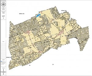 Many Queens pols slam proposed district maps