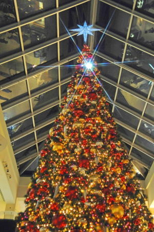 Santa starts the season at Queens Center