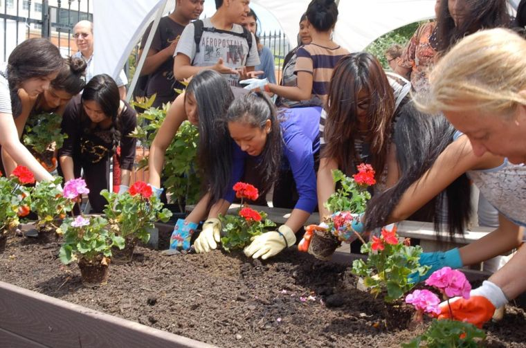 LIC Roots Garden marks expansion 2