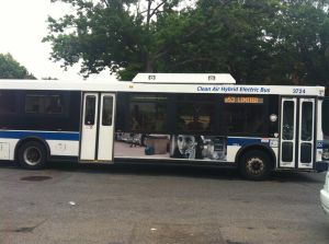 Overnight service coming to Q53 1