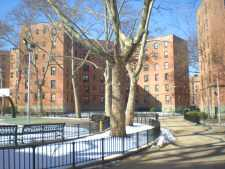 Drug and gun bust at Queensbridge Houses