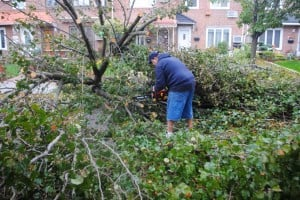 Hurricane Sandy spares parts of boro 1