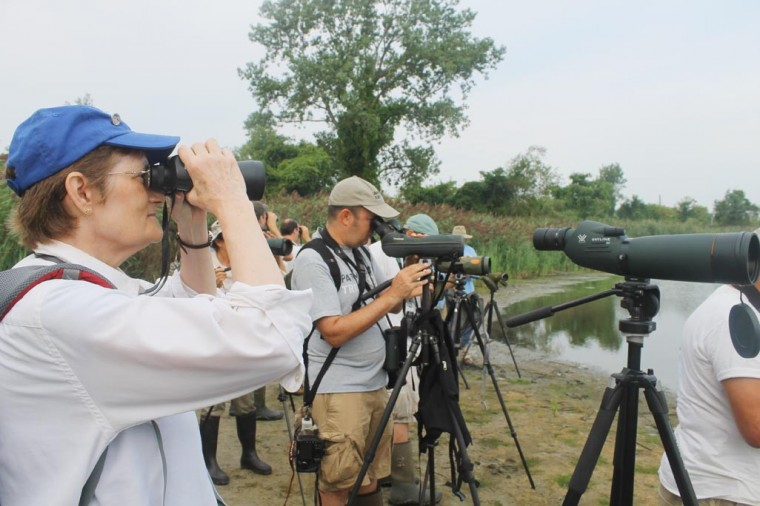 Bird watchers celebrate hobby at Gateway