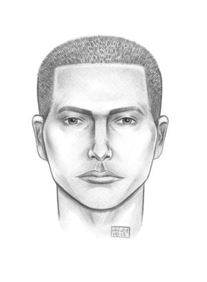 Police seek attacker in vicious rape attempt 1