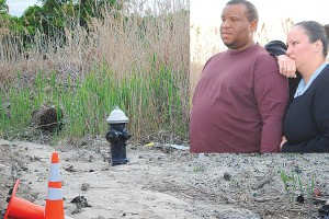 Wetlands headache for Rosedale couple 1