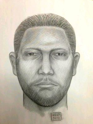Woman's attacker sought by the NYPD 1