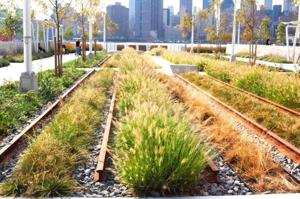 Hunters Point South gets a little greener 2