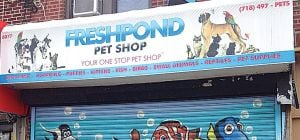 Maspeth pet shop animals removed 1