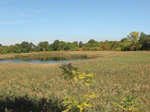 Ridgewood Reservoir to be reclassified? 1