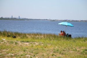 The next 40 years at Jamaica Bay 1