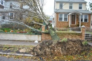 Southeast Queens feels wrath of Sandy