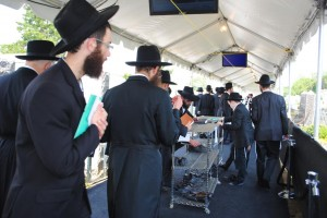 Lubavitchers in Cambria Heights 7