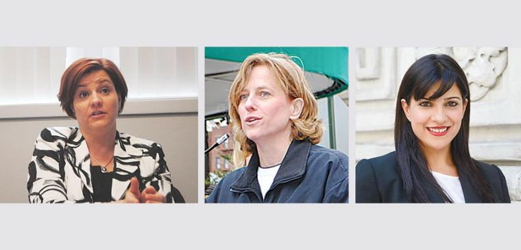 Queens Democrats make 2013 picks 1