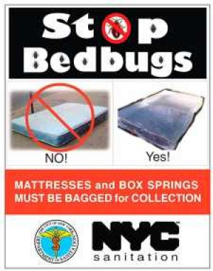 New rule to fight bedbugs